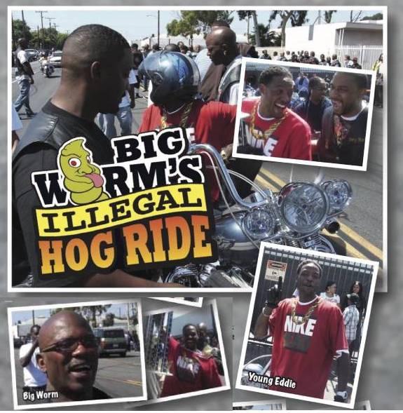 Big Worms Illegal Hog Ride